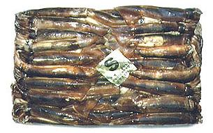 Tuna Longline Accessories Argentine Illex W R Frozen